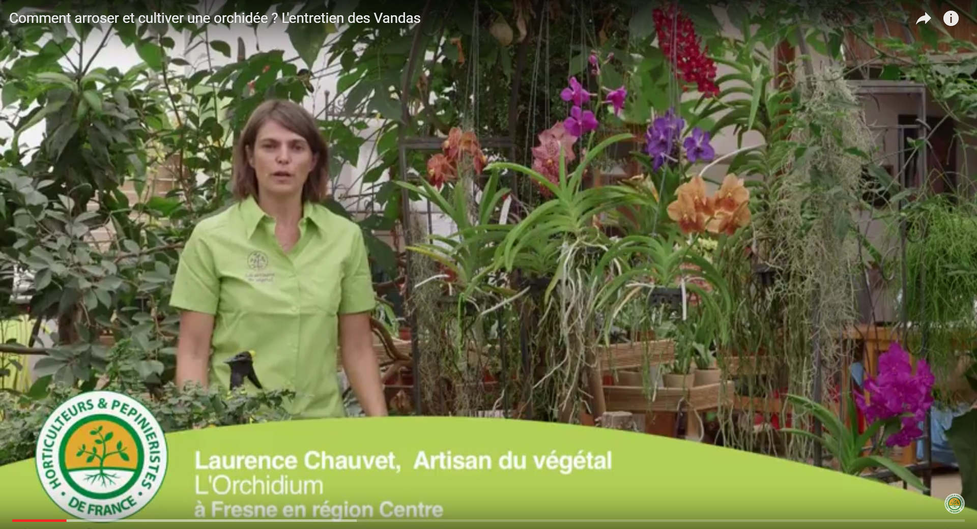 Comment arroser et cultiver une orchid e l 39 entretien des vandas - Comment arroser une orchidee ...